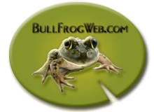 Bull Frog Web Services Logo